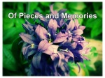 Of Pieces and Memories cover picture